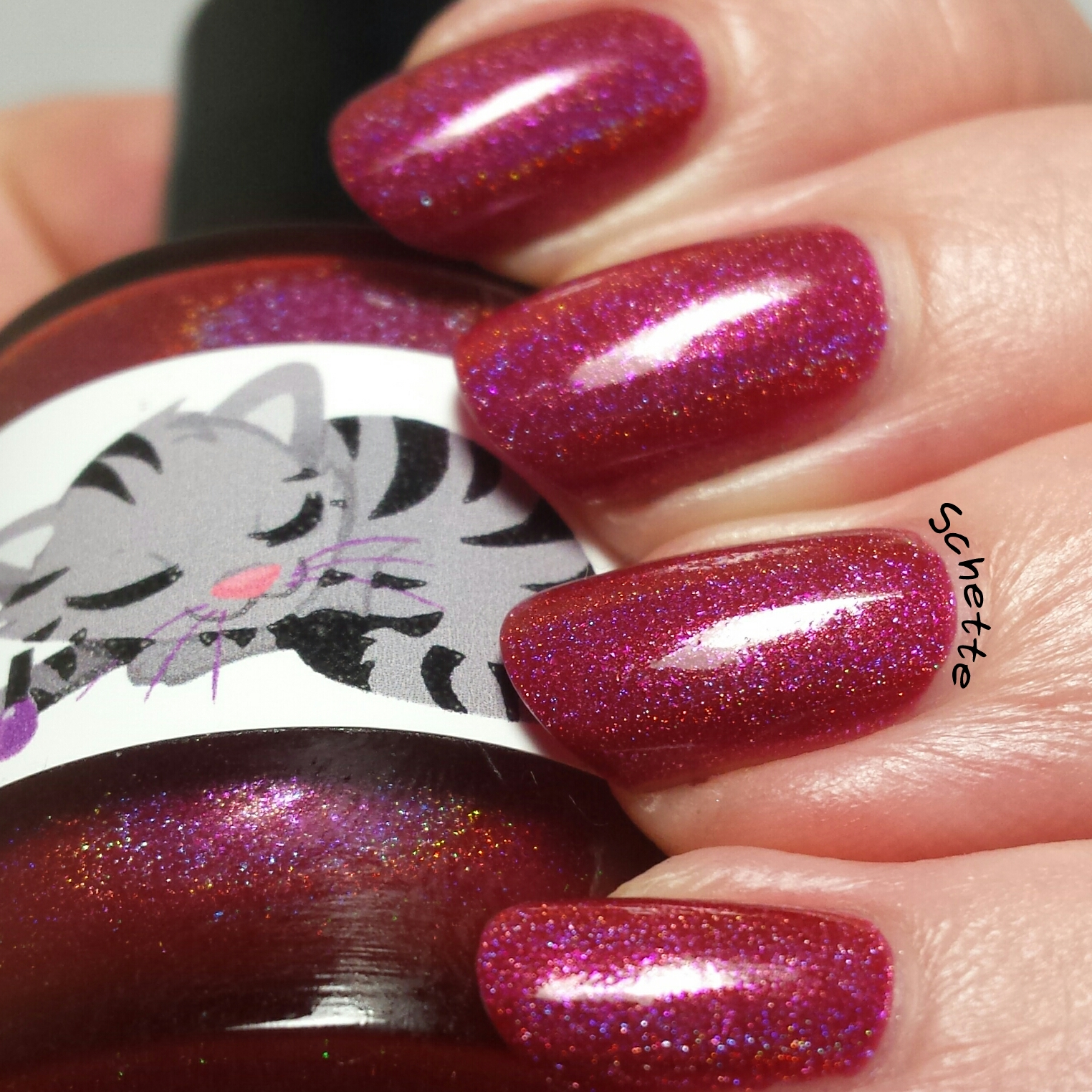Eat Sleep Polish - Cat Scratch Fever