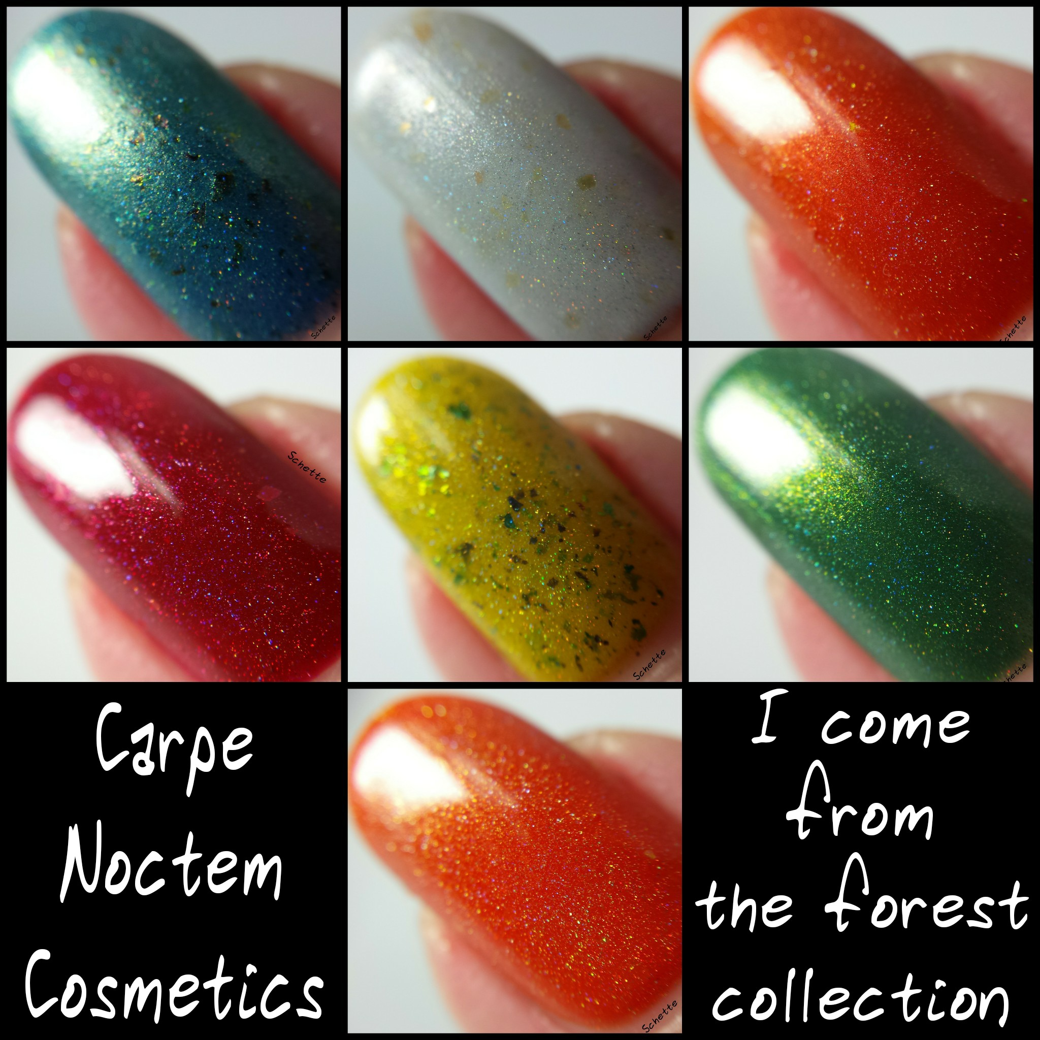 Carpe Noctem Cosmetics - I come from the Forest - Part 2