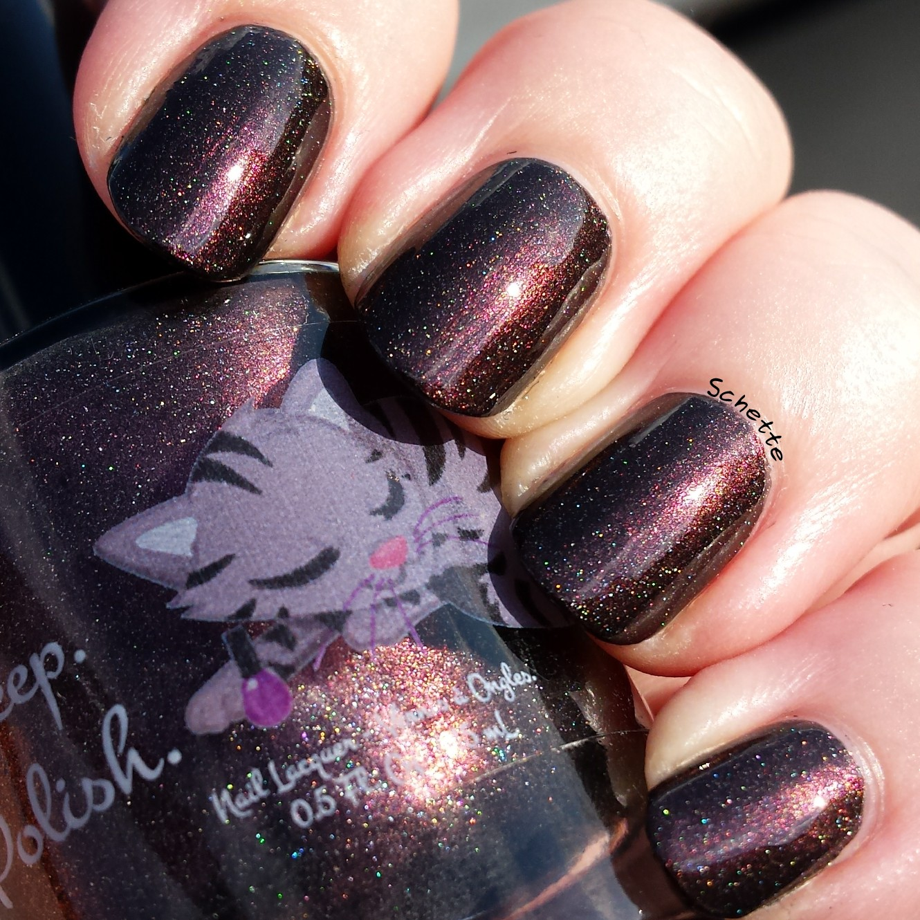 Eat Sleep Polish : The Winged Monkeys