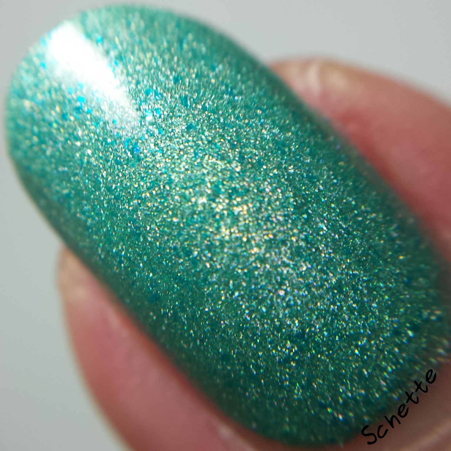 Lilypad Lacquer : Rainbow Connection Exclusive Part 1