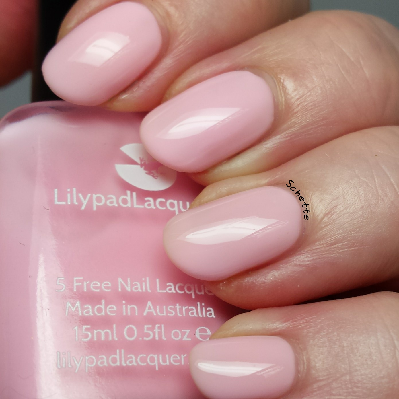 Lilypad Lacquer : The blush collection
