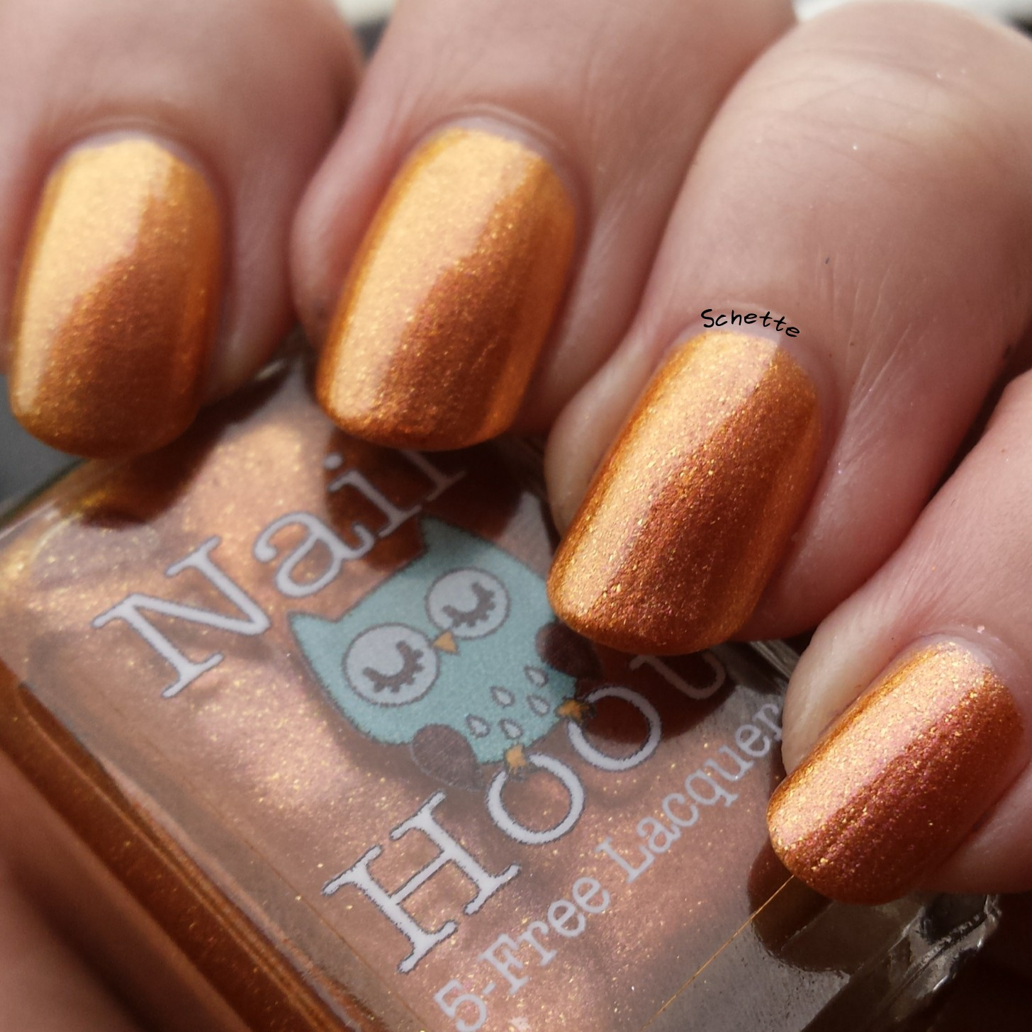 Nail Hoot : Season Collection