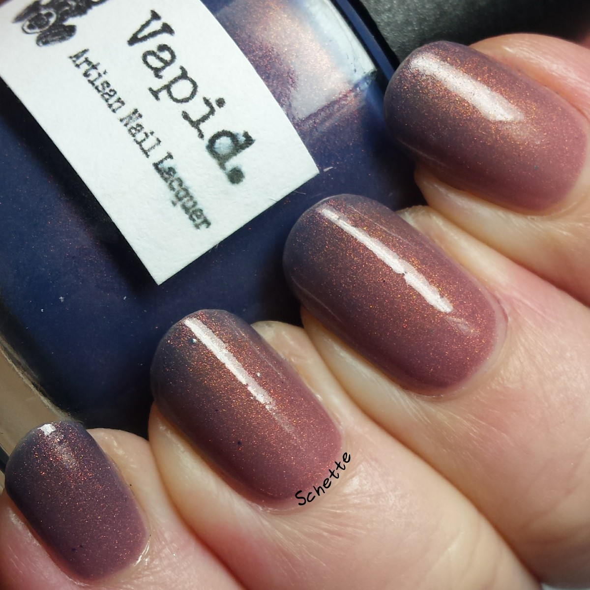 Vapid Lacquer : Sweaters N'Denim