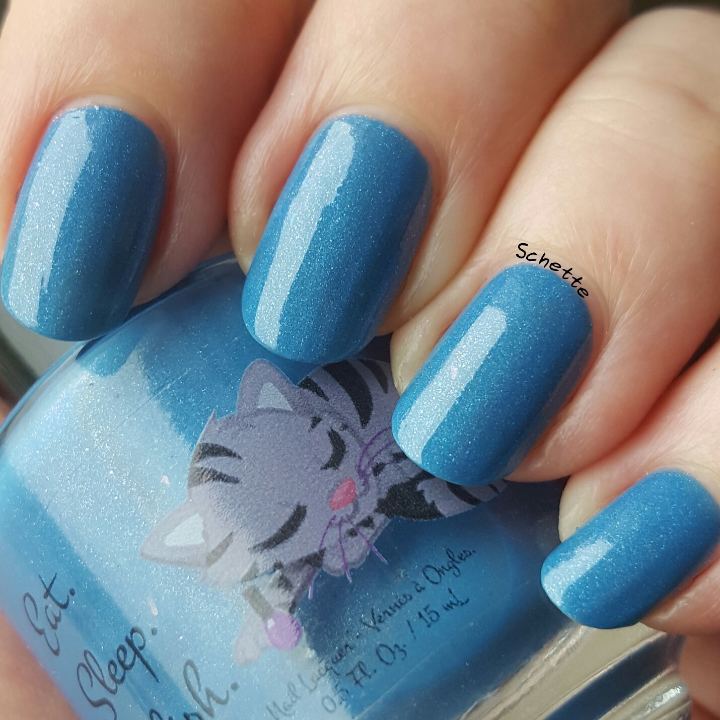 Eat Sleep Polish : Perry the Parokeet