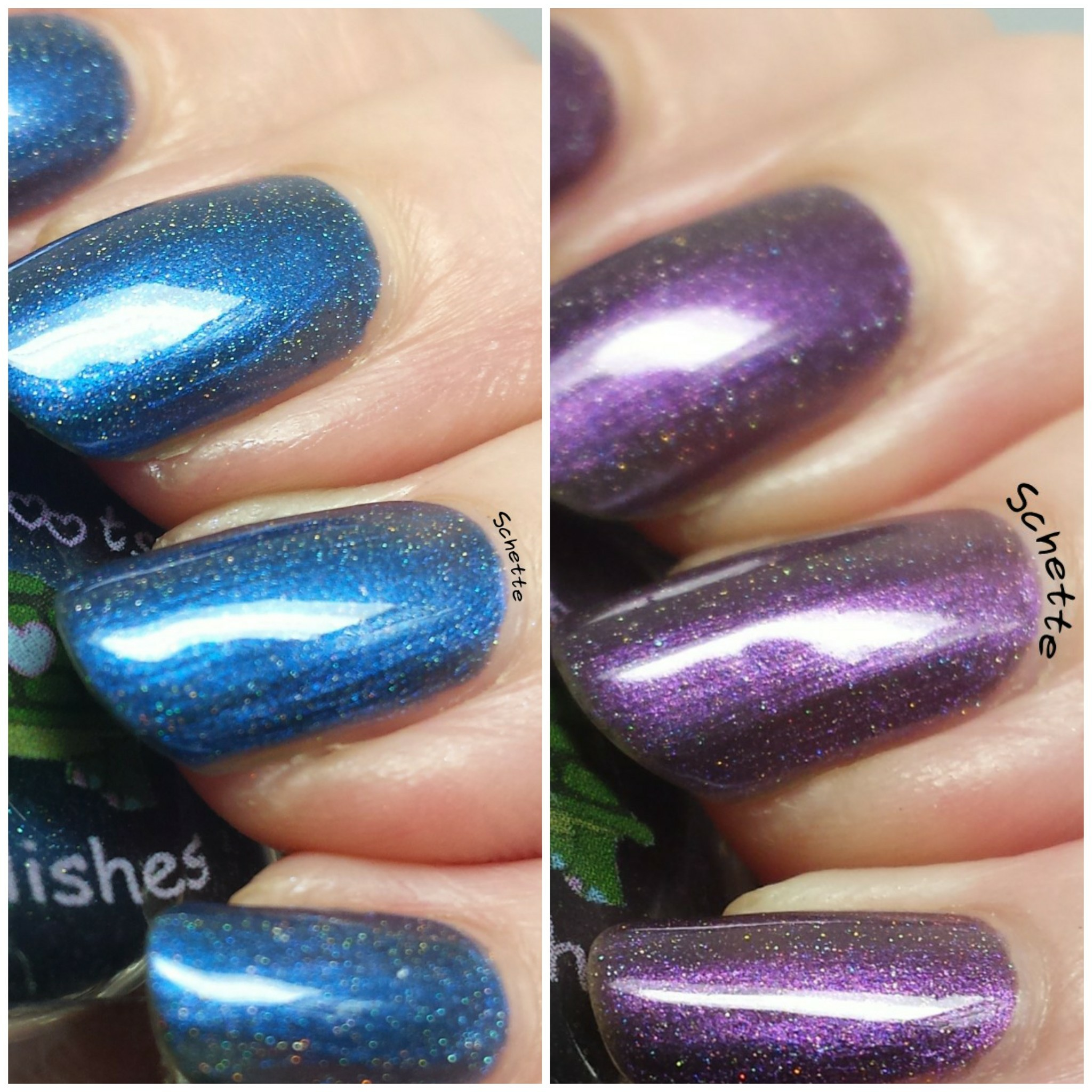 Turtle Tootsie Polish : Full Moon, Holster Sniffer