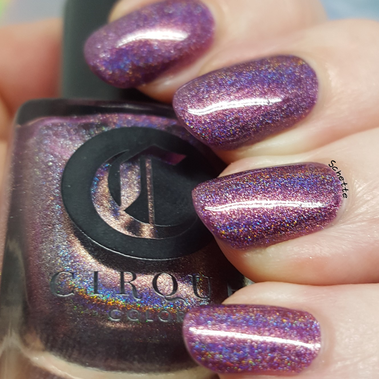 Cirque colors - Boudoir