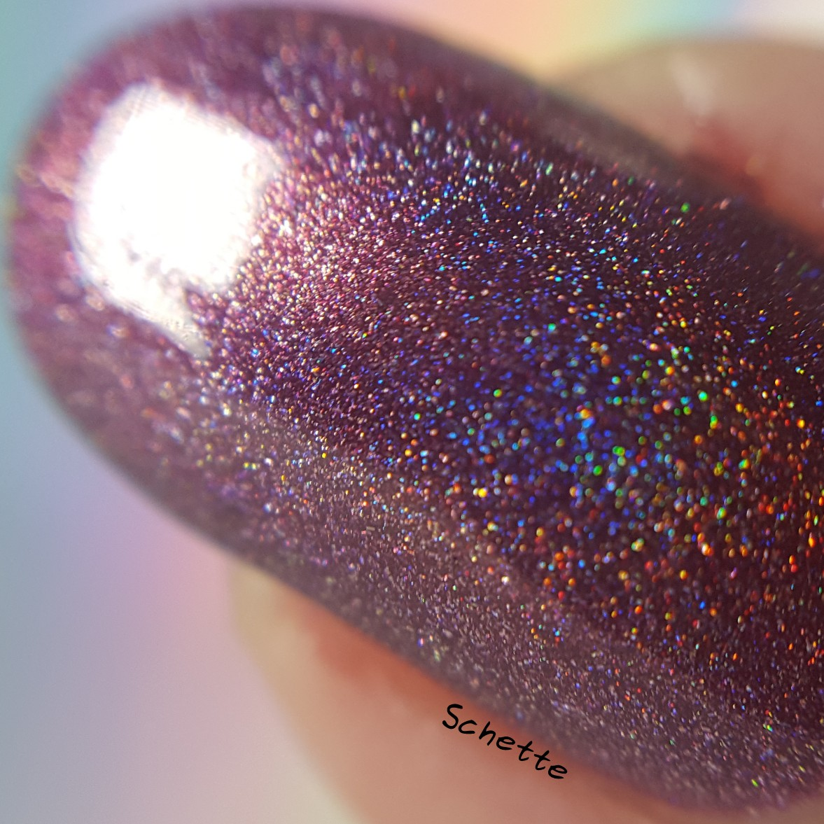 Cirque colors - Boudoir