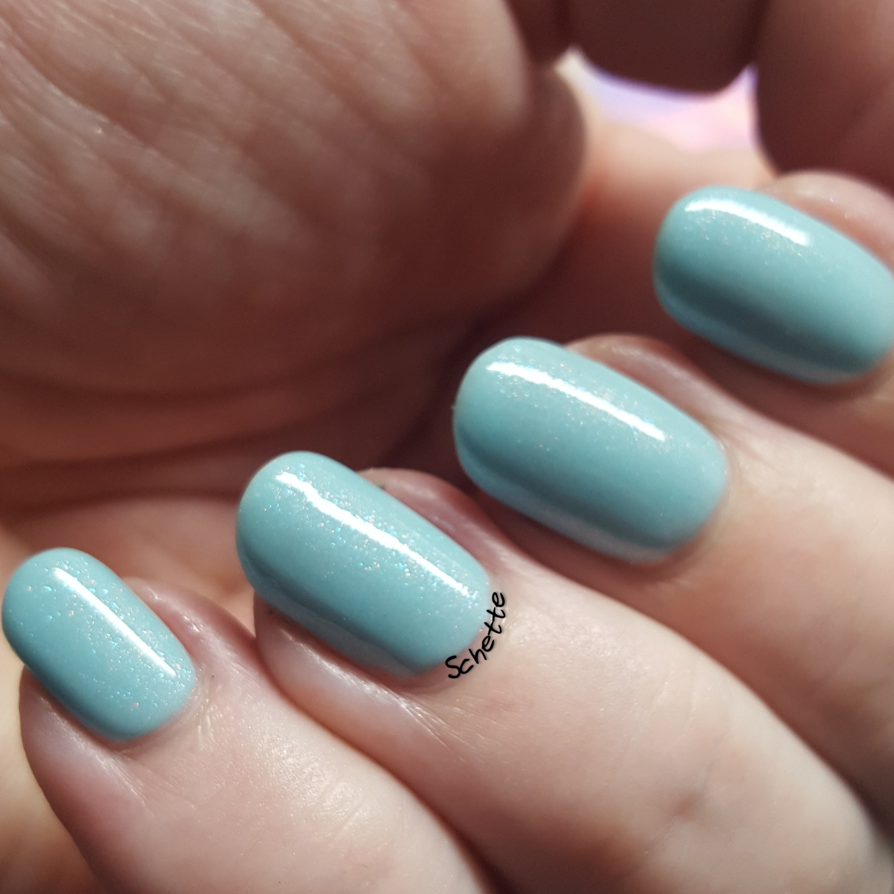 Enchanted Polish - Fly