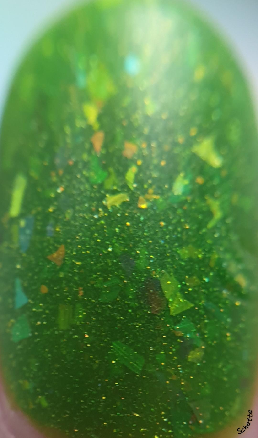 Glisten & Glow - Under the kapok trees