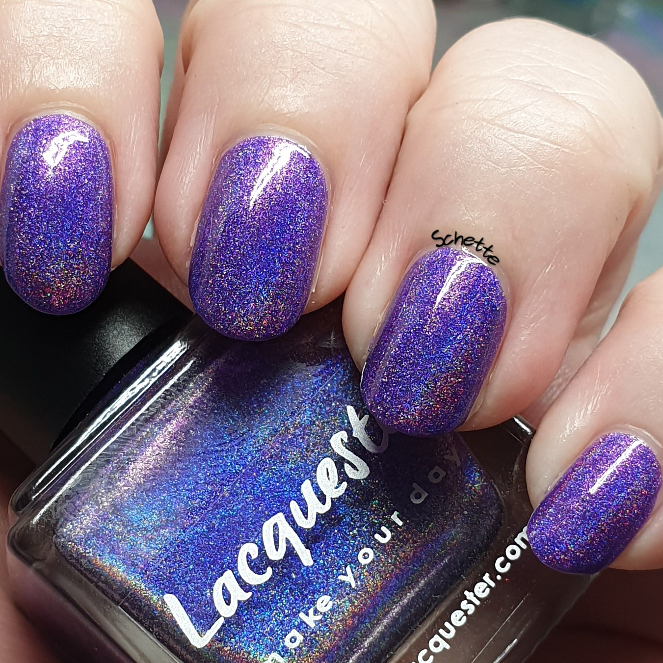 Lacquester - Color of Kings, Favored by Queens