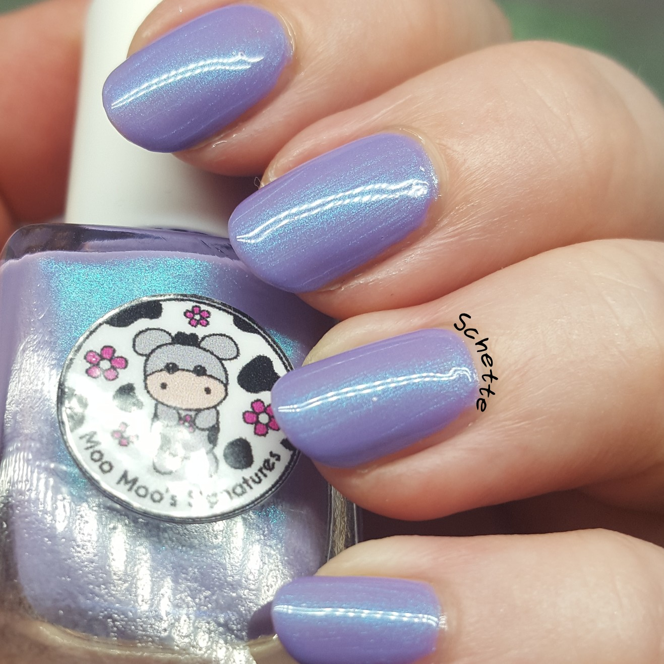 Moo Moo's Signatures - Frozen Lavender